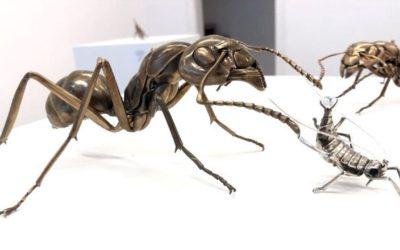 Entre art et science : un biologiste redonne vie à des insectes préhistoriques
